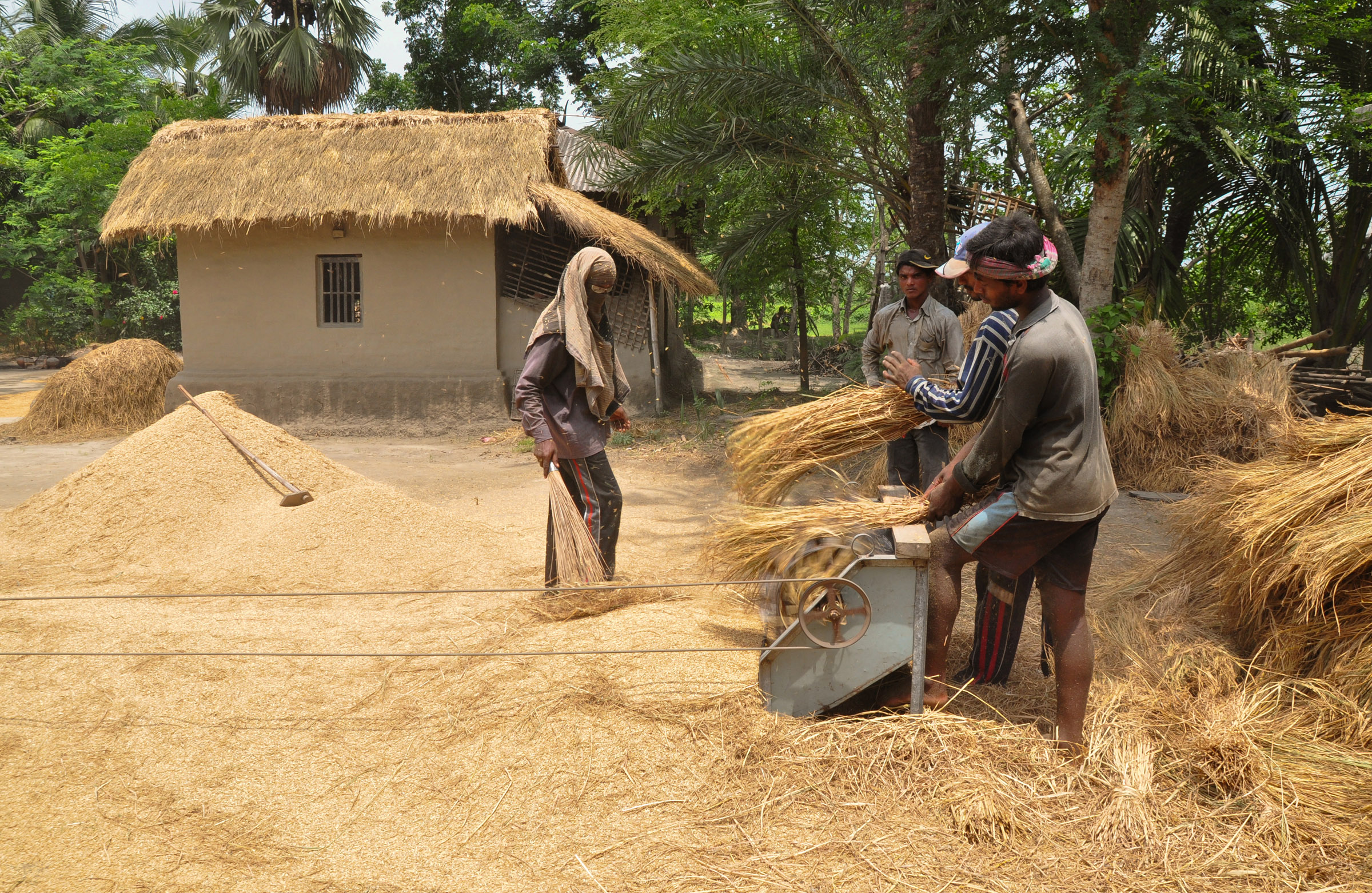 Image result for Bangladesh rural farmers home