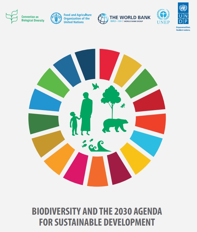Biodiversity And The 2030 Agenda For Sustainable Development