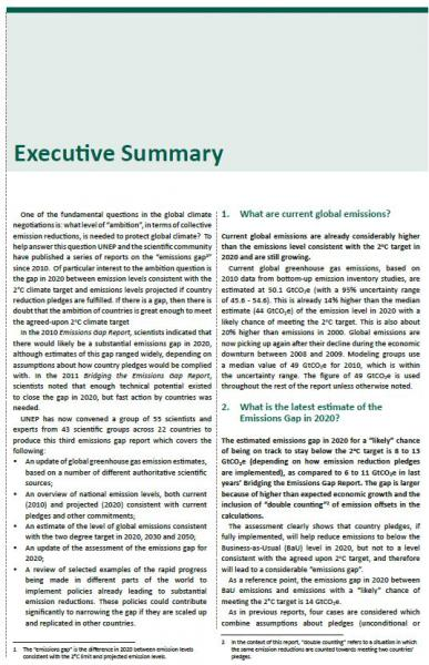 what goes in an executive summary of a report