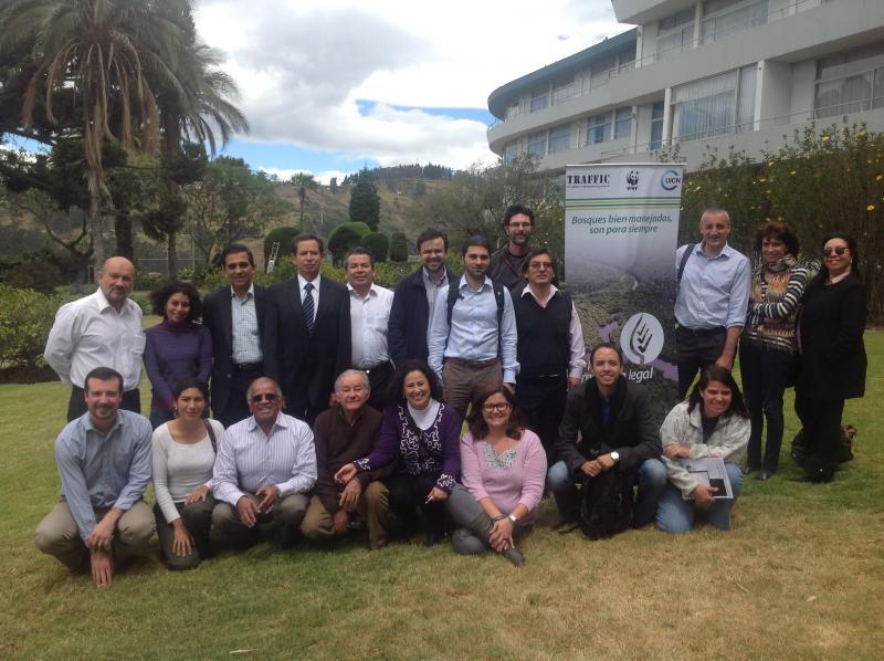 Forestry experts in Quito