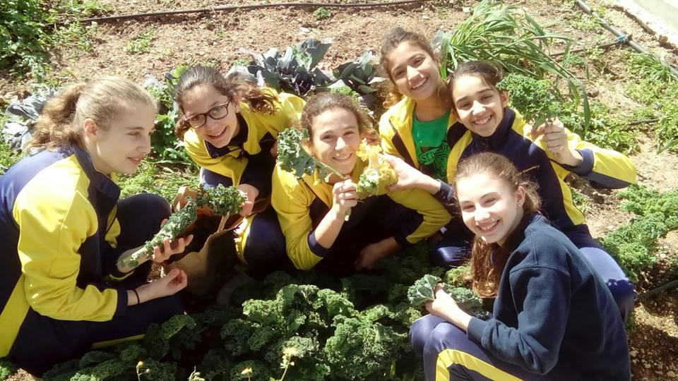 Pupils in their school vegetable garden, Malta