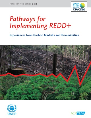 pathways_for_implementing_redd_320.jpg