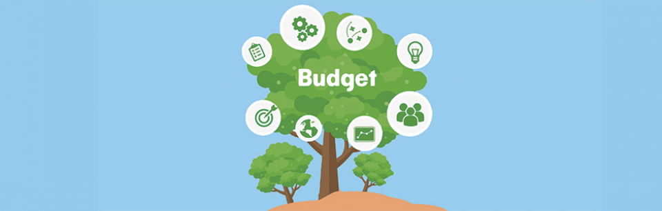 Budget Support Topic Image