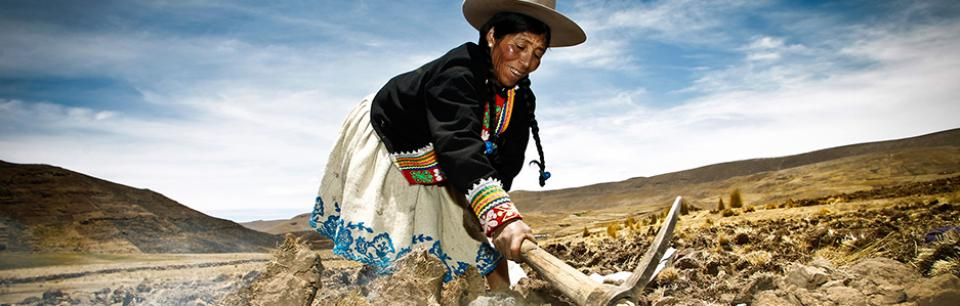 indigenous woman working land