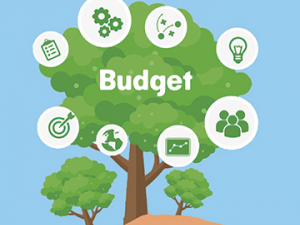 Budget Support Thumbnail Image