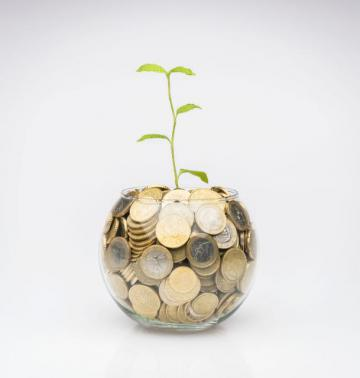 A bowl full of coins and a growing plant © EU