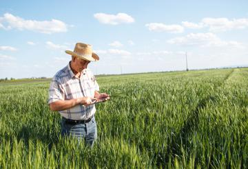 A farmer using a smart device in a field © EU