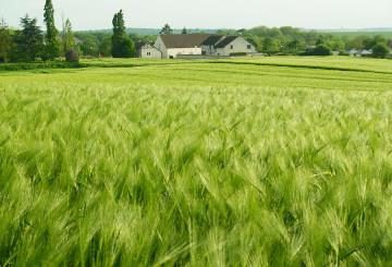 View of the countryside © EU