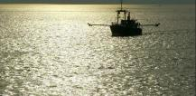 Fishing boat at sea © EU