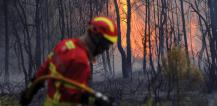 Firefighter spraying water on forest fire © EU