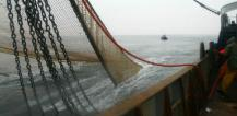 Fishing boat and nets © EU