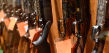 Firearms in display cabinet © EU