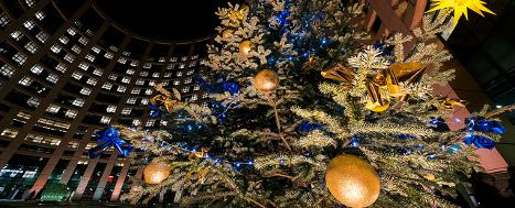 Christmas tree outside European Parliament building, Strasbourg © EU