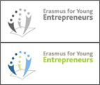 European entrepreneur exchange programme