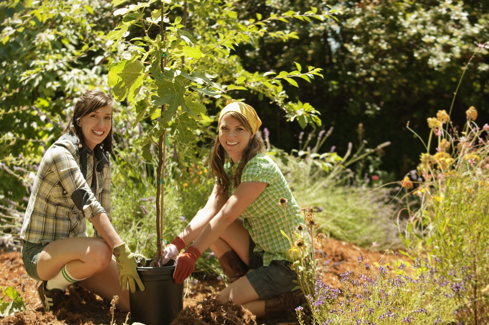 Two young girls planting a tree together