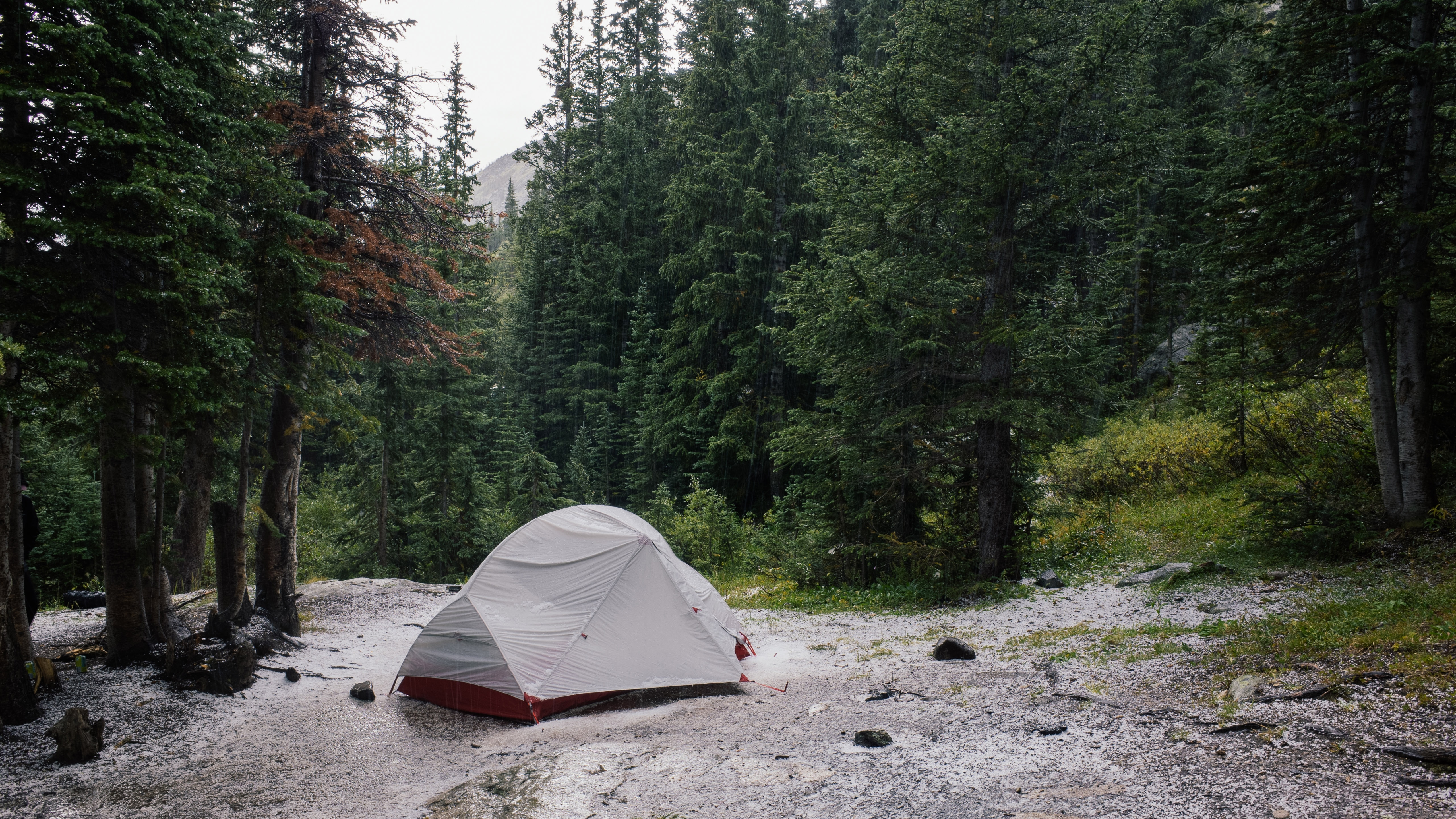 Single tent in the forest in the rain